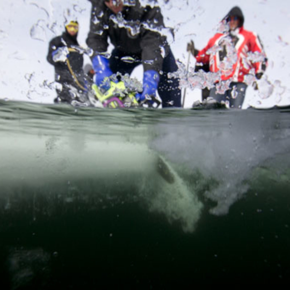 ICE DIVING 2012